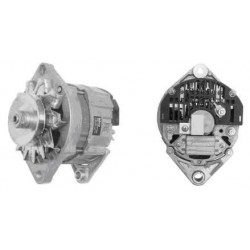 Alternatore Iveco 79/115/190 30AH 24V