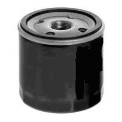 Oil Filter Ducato / Daily double filtration